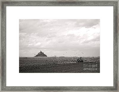 Farm Work At Mont Saint Michel Framed Print by Olivier Le Queinec