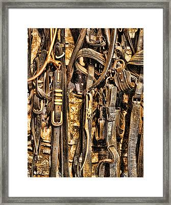 Farmer - Heavy Team Driving Harness  Framed Print by Lee Dos Santos