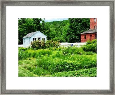 Farmer's Garden Framed Print by Susan Savad