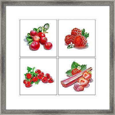 Farmers Market Gifts Red Vitamins Framed Print by Irina Sztukowski