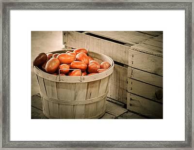 Farmers Market Plum Tomatoes Framed Print