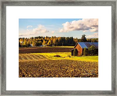 Farmer's Sunny Autumn Day Framed Print