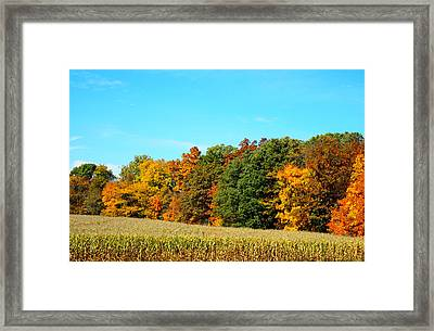Farmfield Fall Framed Print