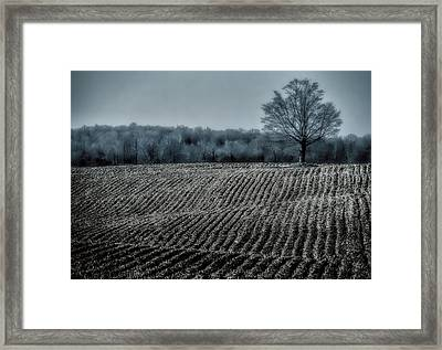 Farmfield Furrows Framed Print
