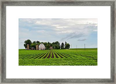 Farmhouse Framed Print by Tom Druin