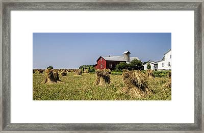 Farming Amish Style Cropped Framed Print by Kathy Clark