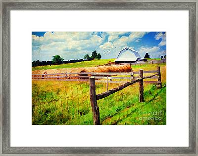 Farming Framed Print by Darren Fisher
