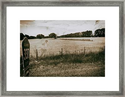 Farming Framed Print by Howard Salmon