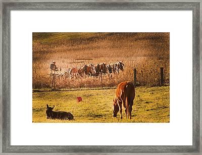 Farming  Modes Of Transportation Framed Print by Randall Branham