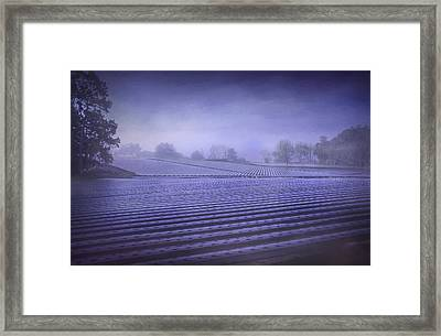 Farmland 2 Framed Print
