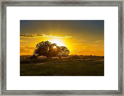Farmland Sunset Framed Print
