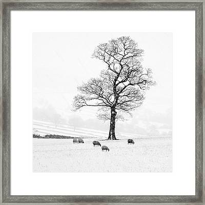Farndale Winter Framed Print by Janet Burdon