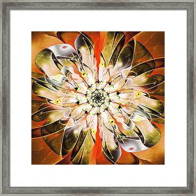 Fascinating Framed Print
