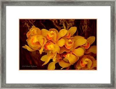 Fascinating Beauty Framed Print by Sonali Gangane