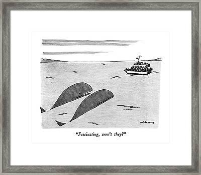Fascinating Framed Print by Mick Stevens