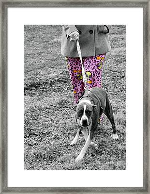 Fashion Rural America  Framed Print by Steven Digman