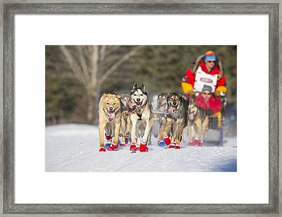 Fast And Flashy Framed Print
