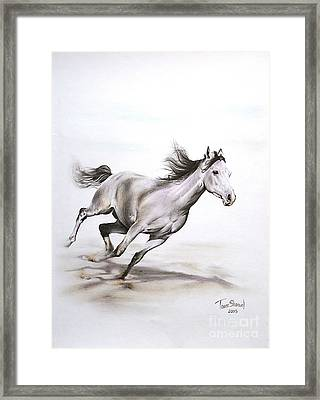 Fast In The Spirit Framed Print by Tamer and Cindy Elsharouni