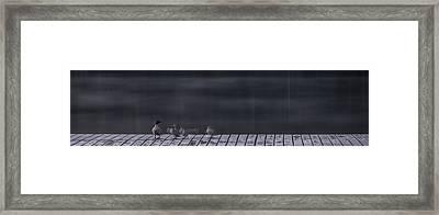 Fast Ones Framed Print