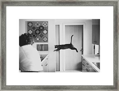 Faster Than A Speeding Bullet Framed Print by Lynn Lennon