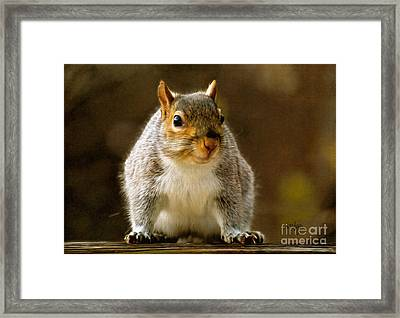 Fat 'n Sassy Smile Framed Print by Lois Bryan