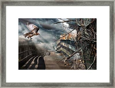Fateful Crossing Framed Print by Christina Rollo