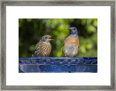 Father And Baby Framed Print by Jean Noren