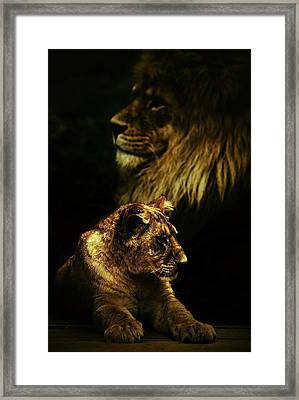 Father And Son Framed Print by Catalin Buzlea