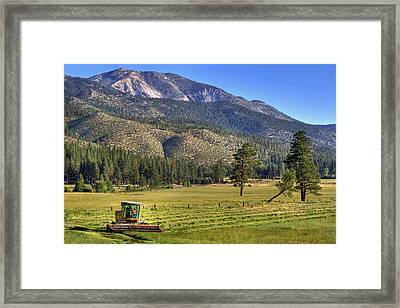 Father And Son Framed Print by Donna Kennedy