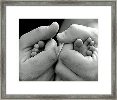 Father And Son Framed Print by Lisa Phillips