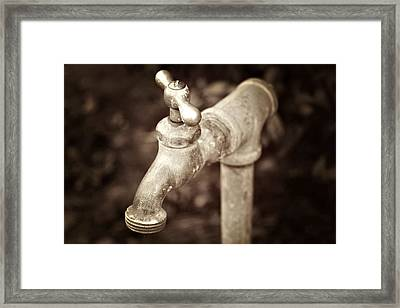 Faucet In Fall Framed Print by Cathie Tyler