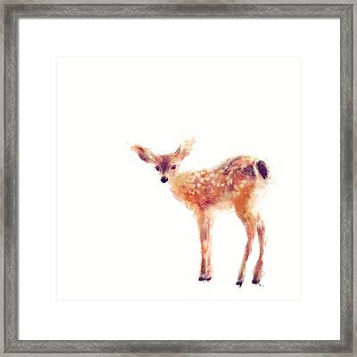 Fawn Framed Print by Amy Hamilton