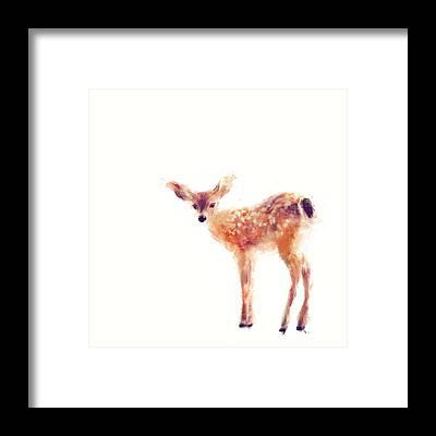 Baby Deer Framed Prints