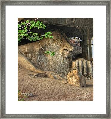 Framed Print featuring the photograph Fe Fi Fo Fum ... by Chris Anderson