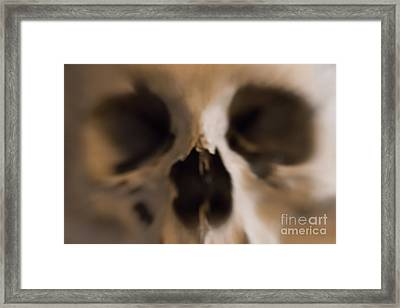 Fear And Trembling - Skull Framed Print by Michal Boubin