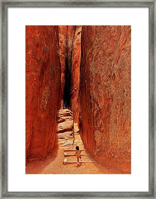 Fearless Framed Print by Benjamin Yeager