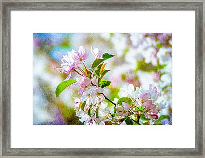 Feast Of Life 10 Framed Print