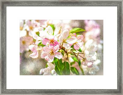 Feast Of Life 16 - Love Is In The Air Framed Print