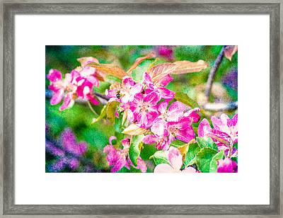 Feast Of Life 21 - Breakfast In The Garden Framed Print