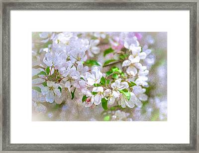 Feast Of Life 23 - Spring Wreath Framed Print
