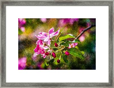 Feast Of Life 4 Framed Print