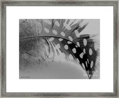 Feather 2 Framed Print
