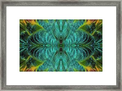 Feather Design Framed Print by Darrell Gulin