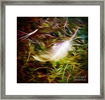 Feather From Heaven Framed Print by Michelle Frizzell-Thompson