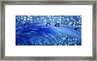 Feather Marbles Framed Print