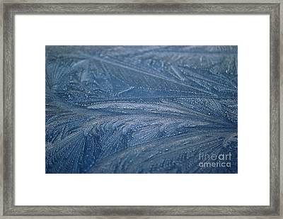 Feathered Blue Framed Print