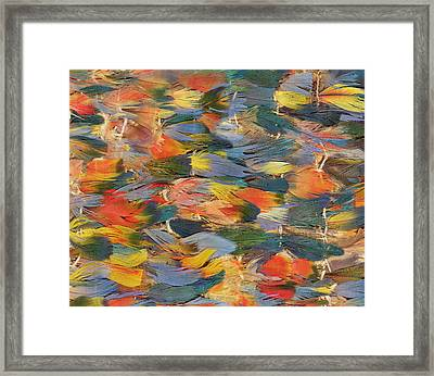 Feathered Cape Framed Print by Peruvian School