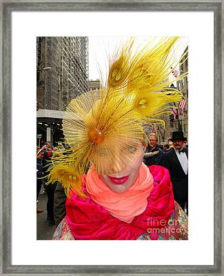 Feathered Finest Framed Print by Ed Weidman