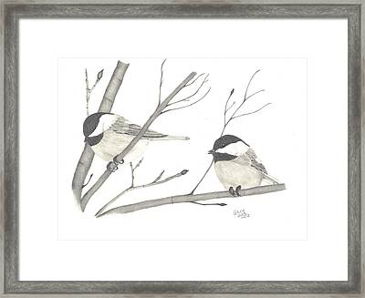 Feathered Friends Framed Print by Patricia Hiltz