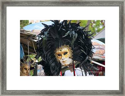 Feathered Glory In Venice Framed Print